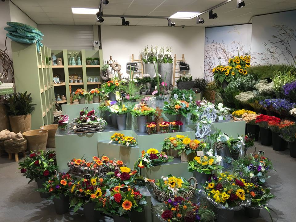 Mooiste bloemenwinkel omgeving Roermond