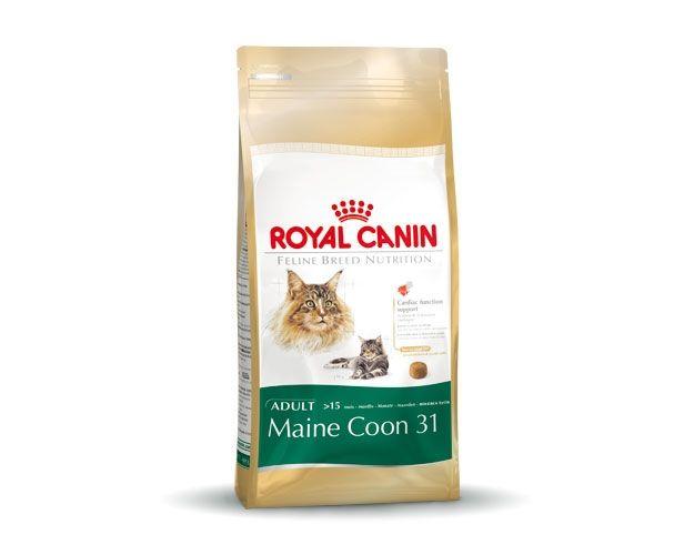 royal canin maine coon 2 kg kattenvoer tuincentrum dani ls. Black Bedroom Furniture Sets. Home Design Ideas